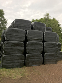 Haylage - Large square bale
